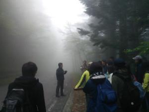 写真1.霧の中のスポットセンサスの練習.