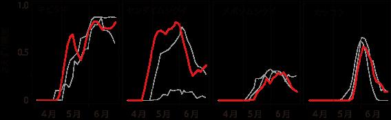 図2 長野県志賀高原の各種鳥類のさえずり頻度。渡来の早いキビタキやセンダイムシクイは他地点と同様に今年は早くからさえずったが,渡来時期の遅いメボソムシクイとカッコウは逆に例年よりも遅かった。