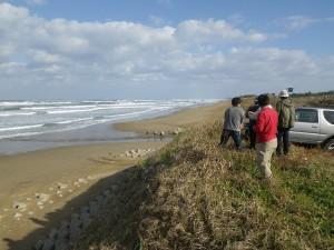 写真4 狭い砂浜
