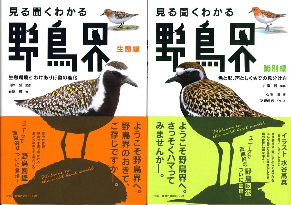 識別編と生態編の2冊に別れています。上下巻ではなく、姉妹編。鳥を見分ける楽しさに惹き込む識別編と、鳥の生態を知る楽しさに惹き込む生態編は、別々に楽しむことができる。