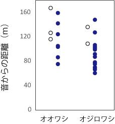 図2.音からの距離とワシの反応の関係。●:音源を注視,○:無視